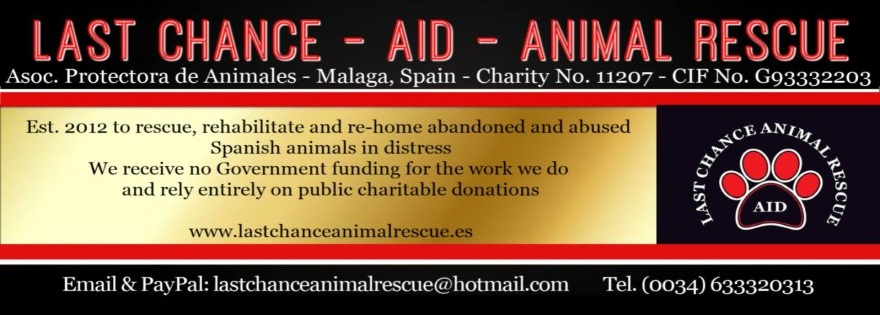 www.animals-in-distress.eu