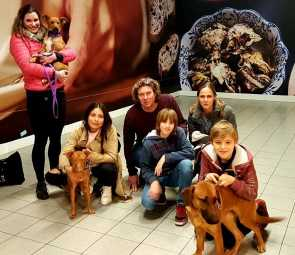 LAURA AND OTHER DOGGIES AT DUTCH AIRPORT