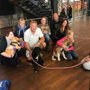 resce dogs meet their new families