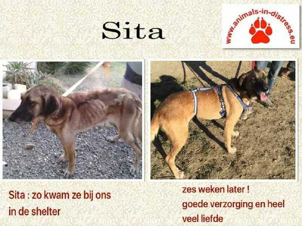 sita then & 6 weeks later