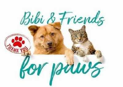 bibi & friends for paws